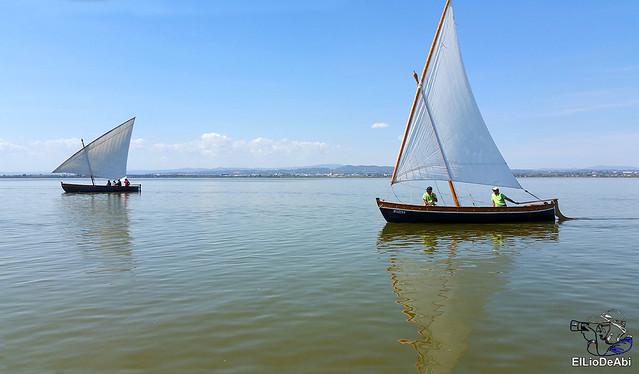 Paseo en barca por la Albufera de Valencia (10)