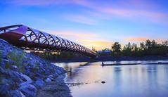 Peace Bridge Skyline