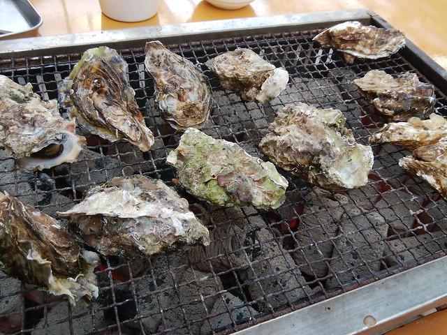 hiroshima-hatsukaichi-shimada-suisan-oyster-hut-grilled-oysters-01