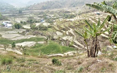 n-pokhara-Pagode-Paix-descente (16)