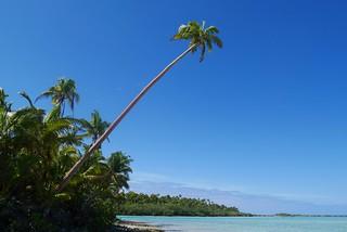 Cook Islands Idyll