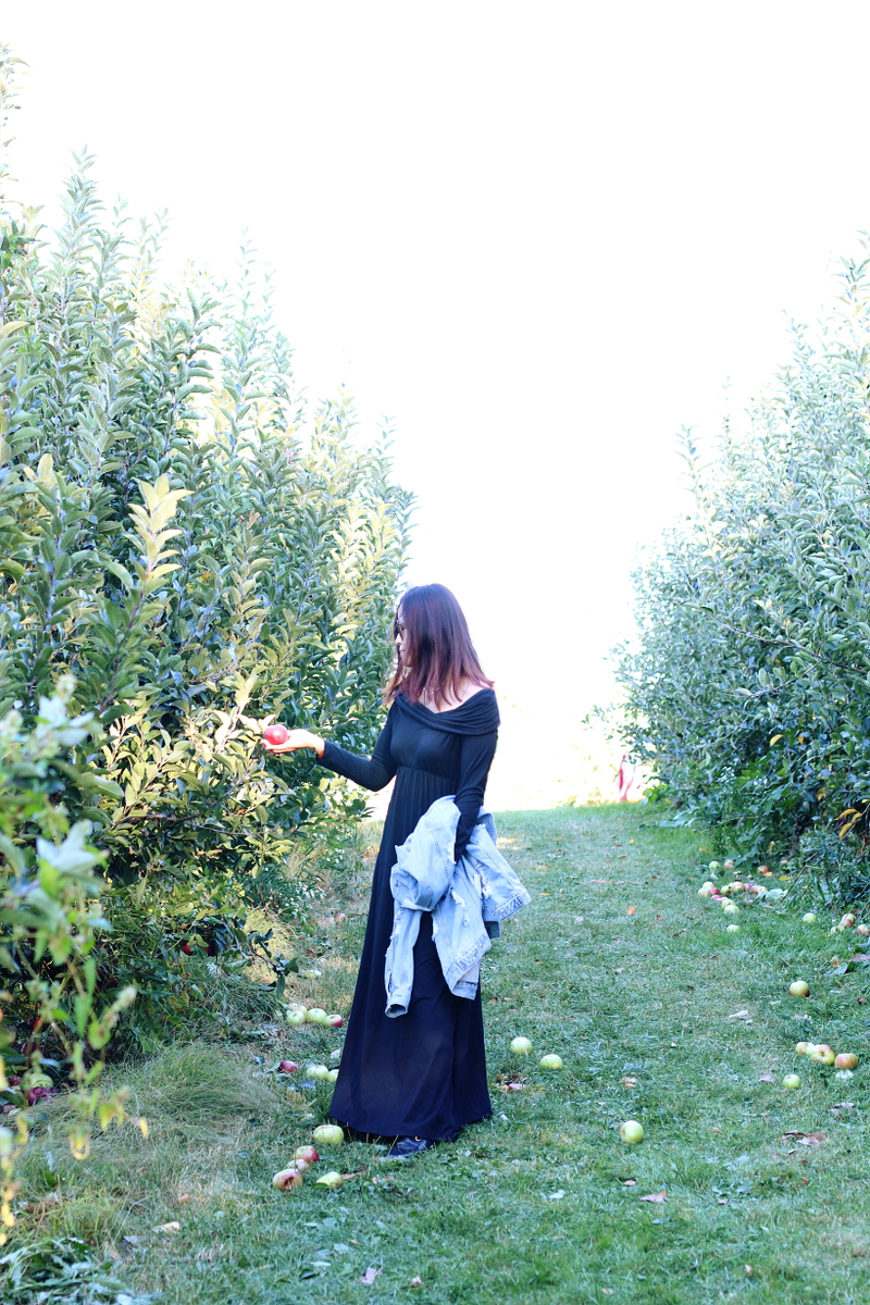 apple-trees-soergel-farms-black-maxi-dress-2