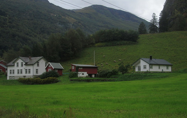Typical Norwegian Houses, Flåm