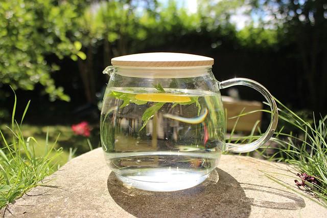 Segundo a especialista Dani Lieuthier, o método mais comum de se preparar o chá é por meio da imersão das plantas na água quente. - Créditos: Pixabay