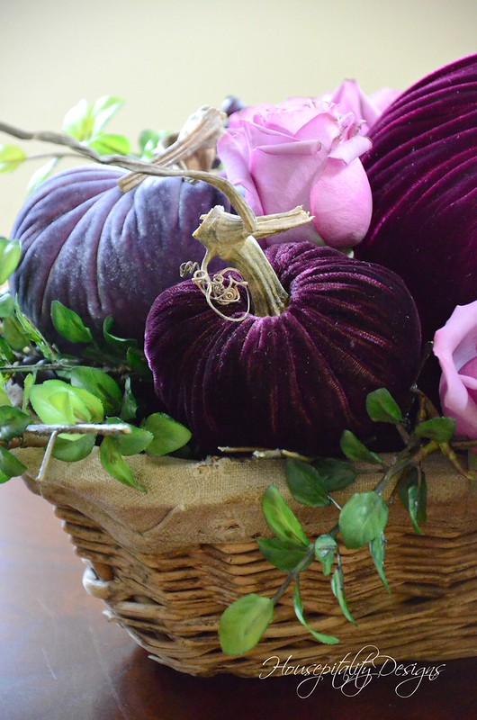 Velvet Pumpkins-Housepitality Designs-6