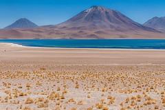 Laguna Miscanti and Miñiques Volcano - Chilean Atacama desert