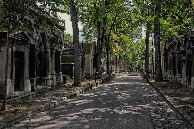 Montmartre Cemetery Avenue