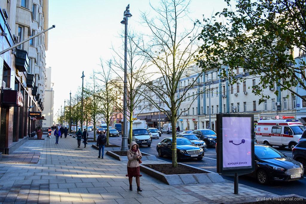 Новые московские деревья