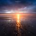 Light by Erwan Le Roux