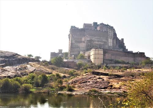 i-jodhpur1-forteresse  (3)
