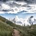 Wijk aan zee Bunker by peterpj