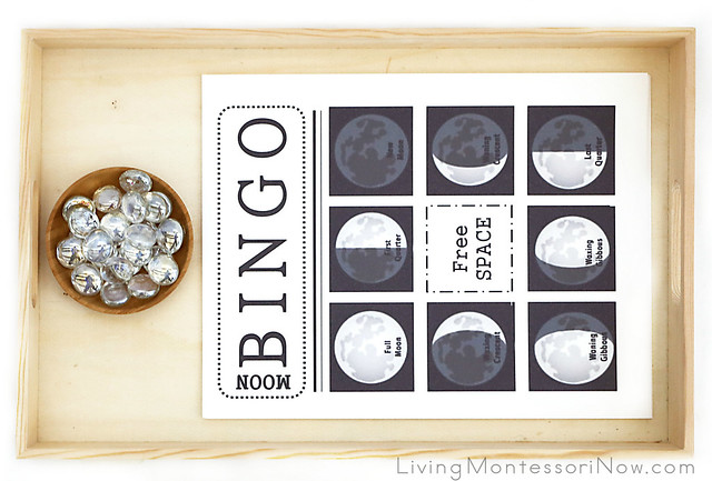 Phases-of-the-Moon Bingo