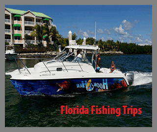 Great Fishing In The Florida Area