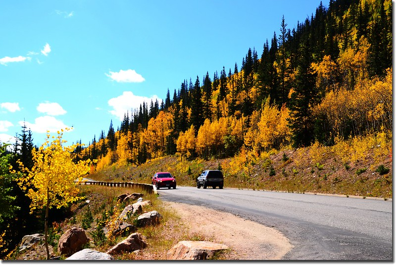Fall colors, Guanella Pass, Colorado (22)