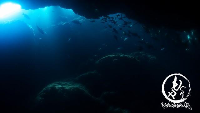 洞窟の光キレイでした!