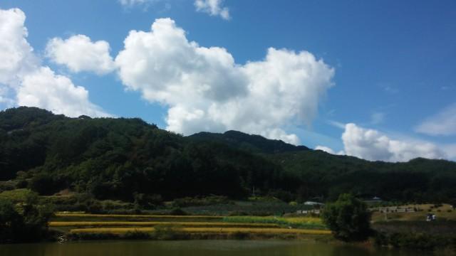 추석성묘 | 구름 가득한 하늘
