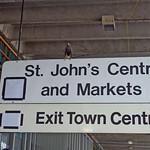 Pigeons beware!
