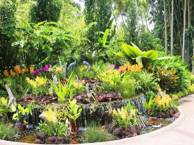 gradina orhidee Gradini si Parcuri din Singapore 1