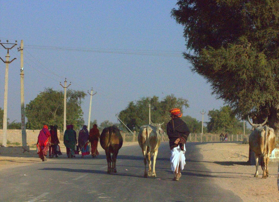 Walk walking down street in rural Rajasthan