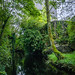 Ireland-7850-HDR.jpg