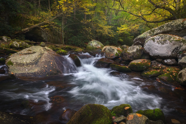 Great Smoky Mountains, Fall on Big Creek, North Carolina
