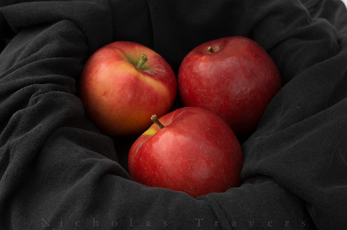 1015_NicholasTravers_some Produce_01656