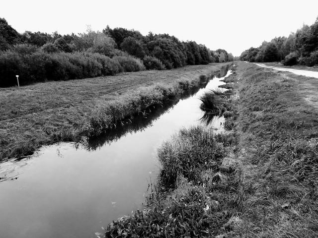 Vaskjala-Ülemiste kanal, Eesti sügis