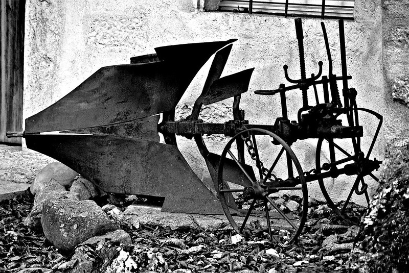 Feldbrunnen 13.11 (7)