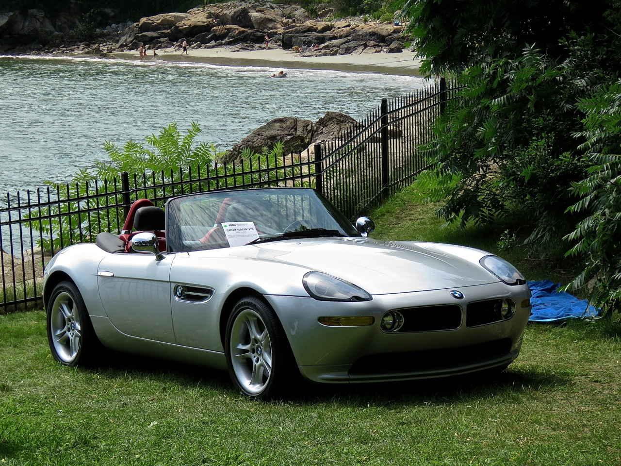 BMW Z8 Misselwood 12