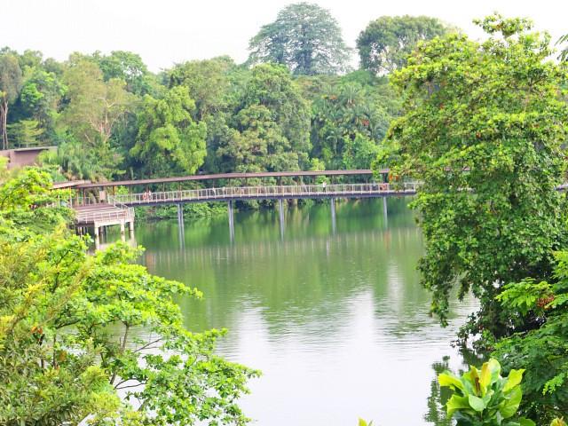 river safari Gradini si Parcuri din Singapore 6