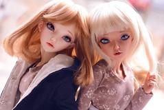 Alicia & Ziva