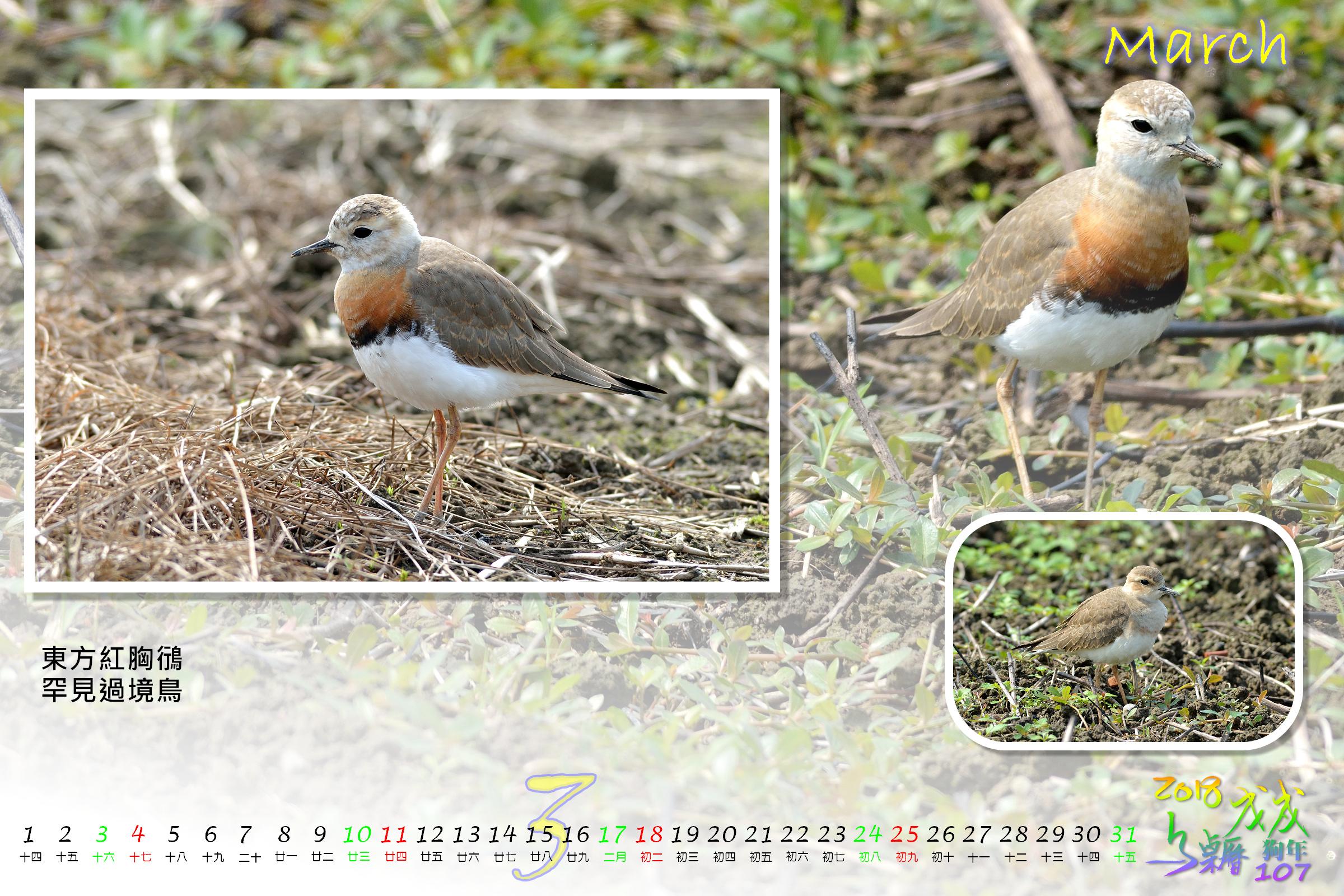 Calendar2018_Alder2_03
