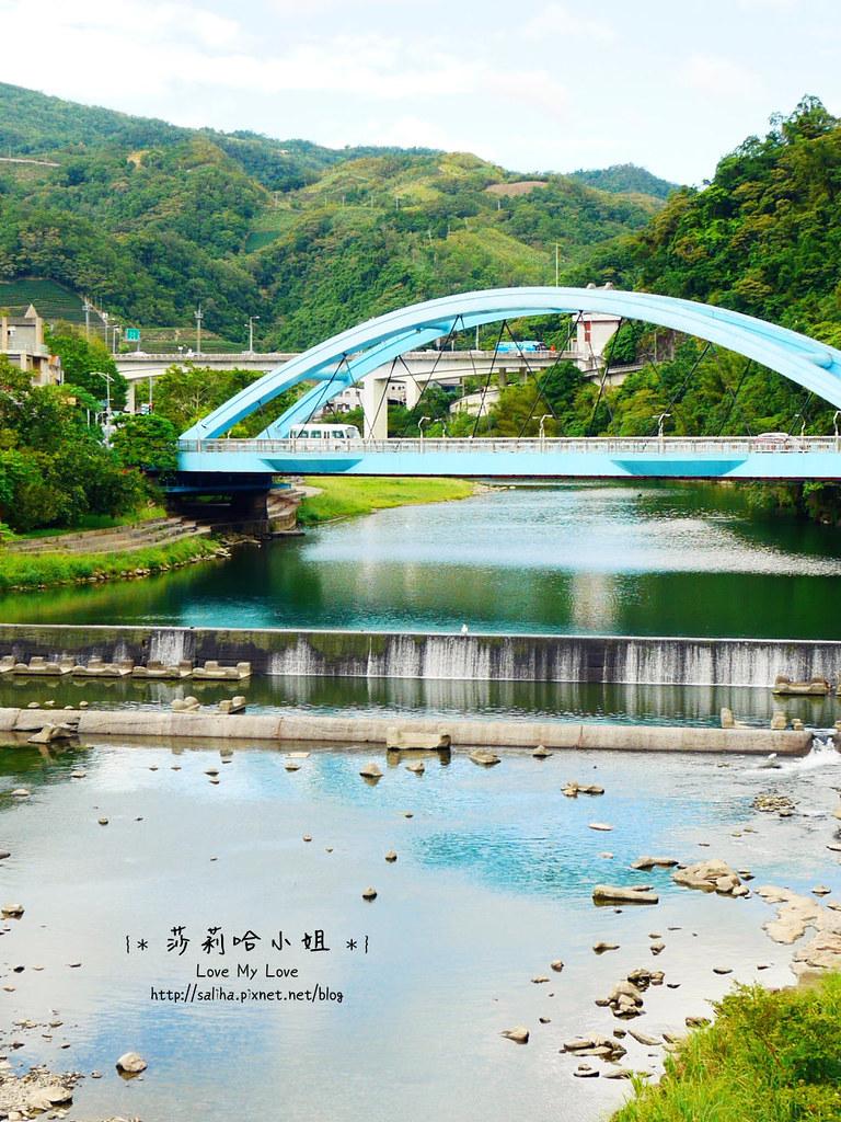 坪林茶業博物館 (4)