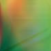 Color Grid No 2