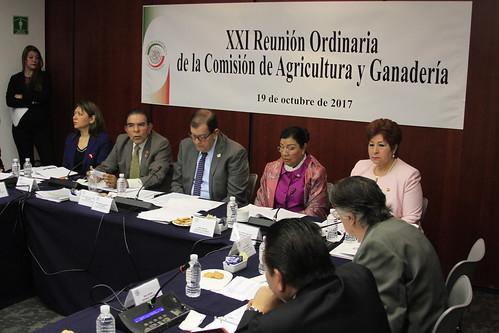 Comisión de Agricultura y Ganadería 19/oct/17