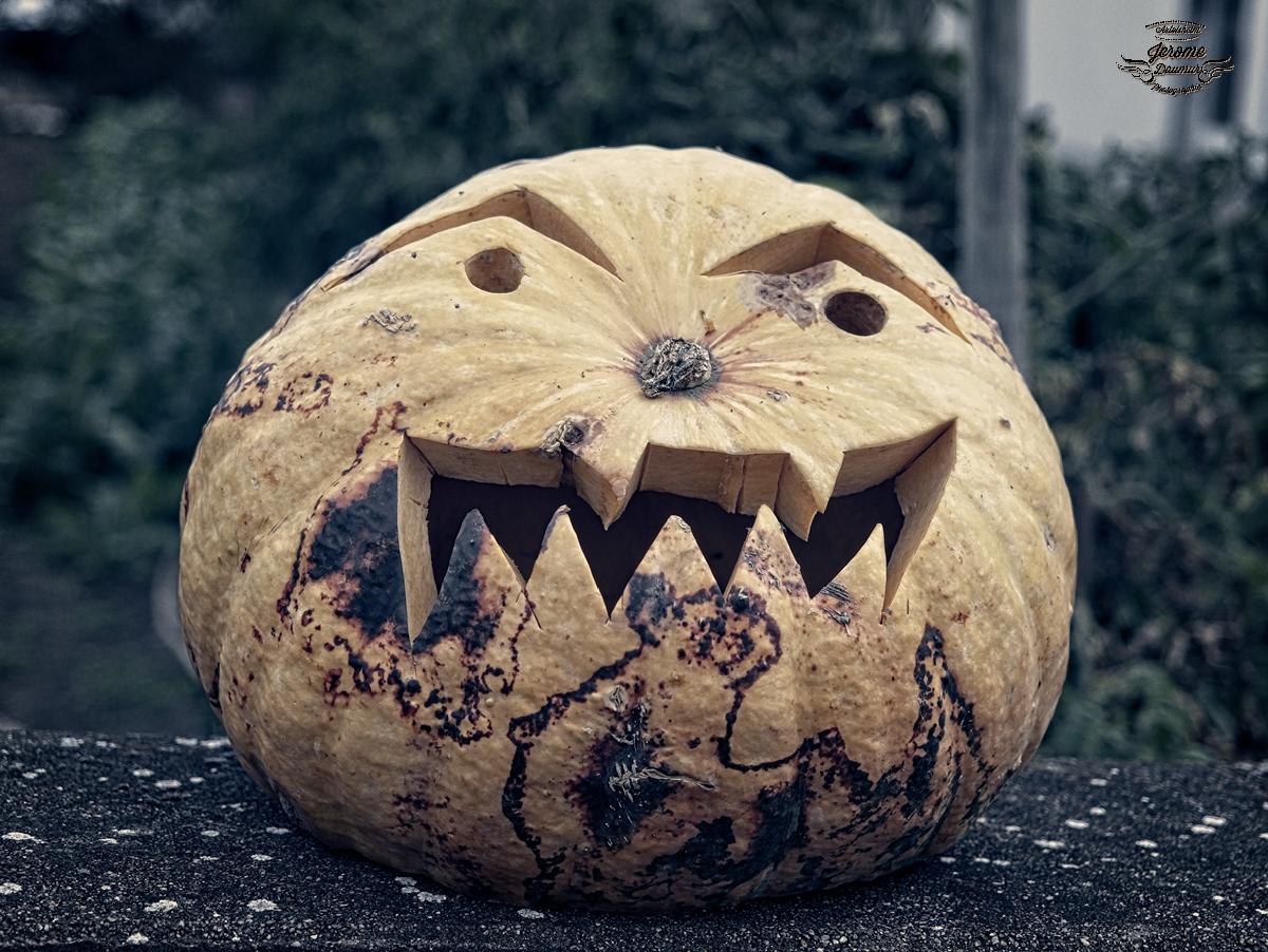 Pumpkin party 2