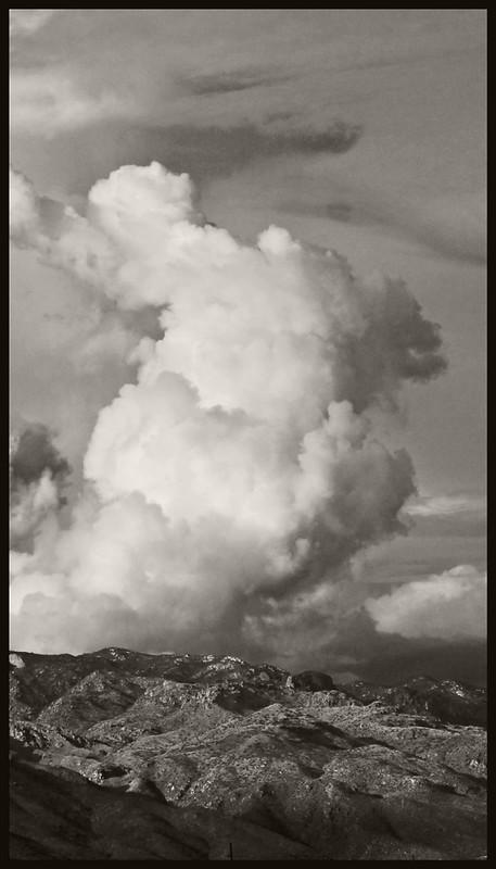 Santa Catalinas & Monsoon #5; 2016