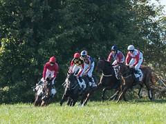 2017 Virginia Fall Races (8)