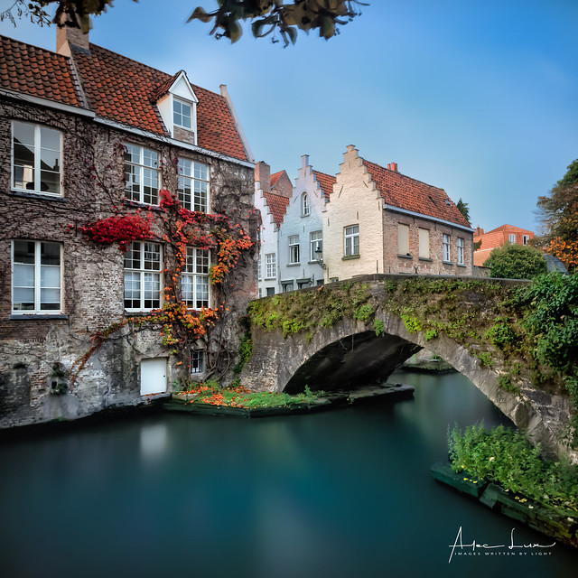 Autum Colors In Bruges I
