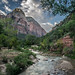First rays of morning sunlight strike Zion Canyon by T.M.Peto