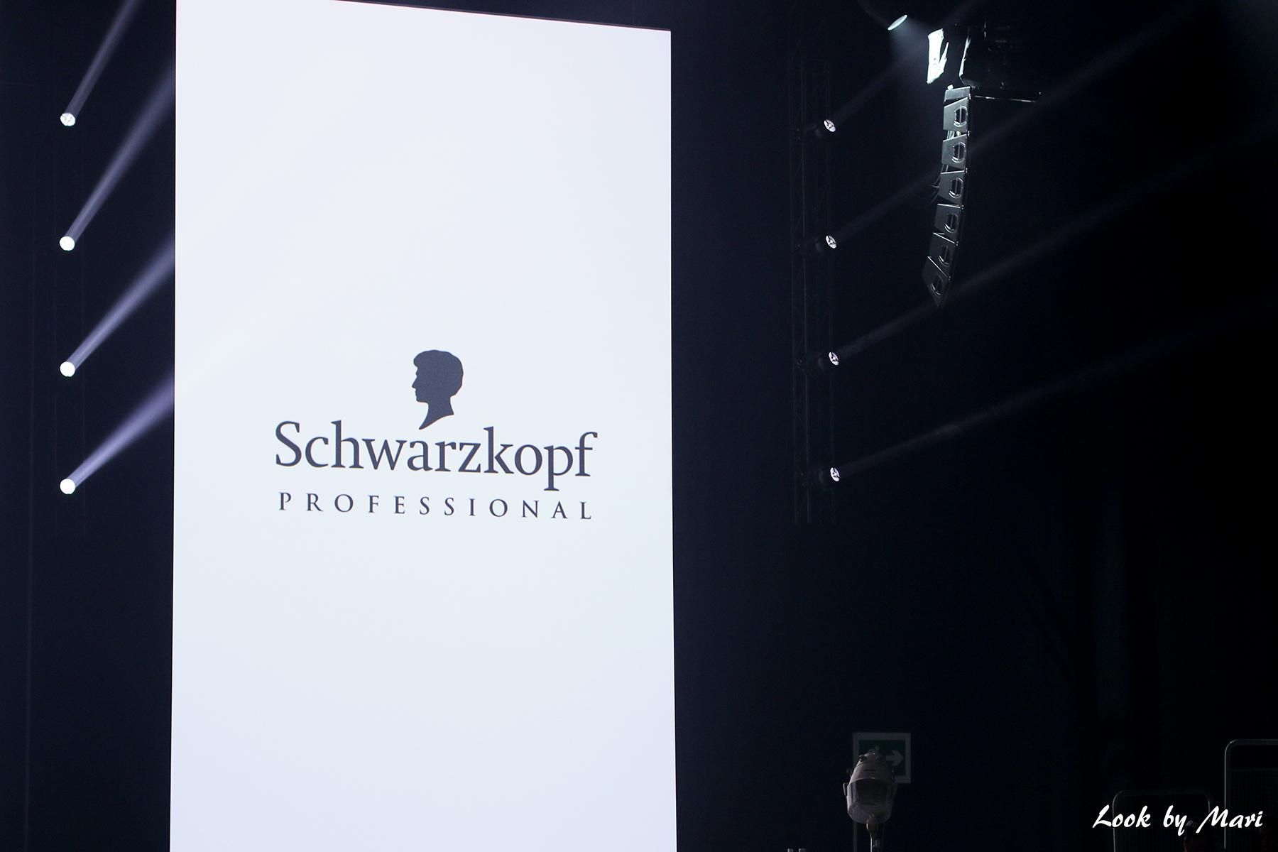 2 schwarzkopf professional finland pro show 20.10.2017