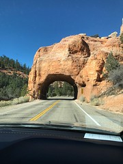 Headed for Zion