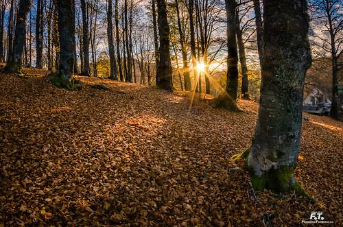 Autunno a Forca d'Acero / Autumn in Forca d'Acero