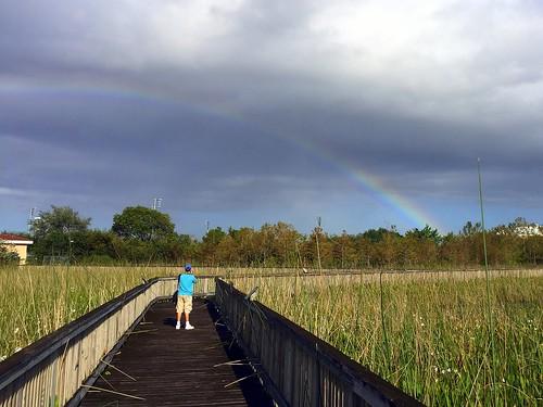 Rainbow over LibraryWetlands 20171104