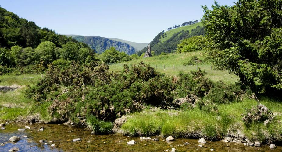 De 5 beste dagtrips vanuit Dublin: Wicklow Mountains en Glendalough | Mooistestedentrips.nl