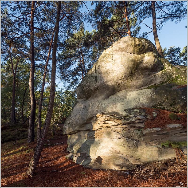 Les rochers de Nemours 23663107828_353536cbf4_c
