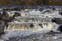 Great Falls Park VA 31 Oct 2017 (94)