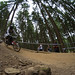 SAE_6233.jpg by Stewi´s Downhill Pics
