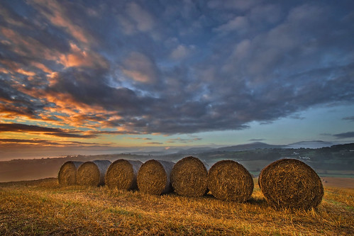 bales straw morning early autumn harvest cut grain wheat field view landscape farm farmer agriculture northernireland ulster canon 80d sigma 1770mm newry countyarmagh alanhopps roundbales clouds bluesky arable tillage crop rotation golden daybreak dawn