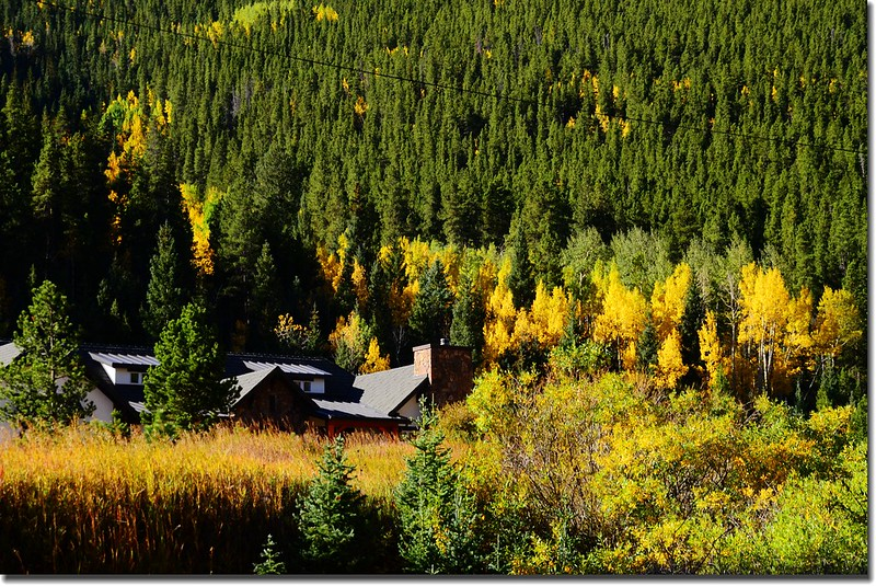Fall colors, Mount Evans Scenic Byway, Colorado (15)